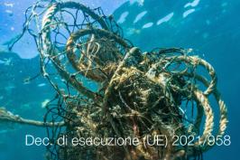 Decisione di esecuzione (UE) 2021/958