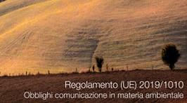 Regolamento (UE) 2019/1010