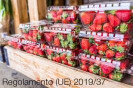 Regolamento (UE) 2019/37