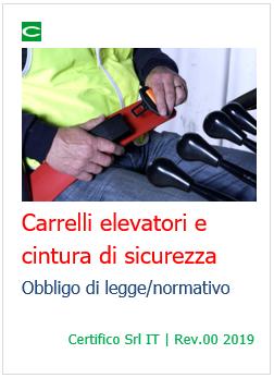 sconto speciale di personalizzate pacchetto elegante e robusto Carrelli elevatori e cintura di sicurezza: obbligo di legge ...