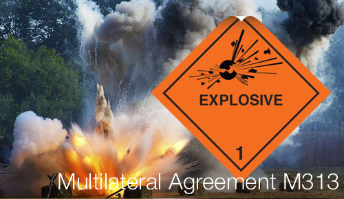 Multilateral Agreement M313
