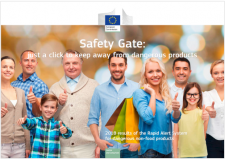 safety gate report 2018